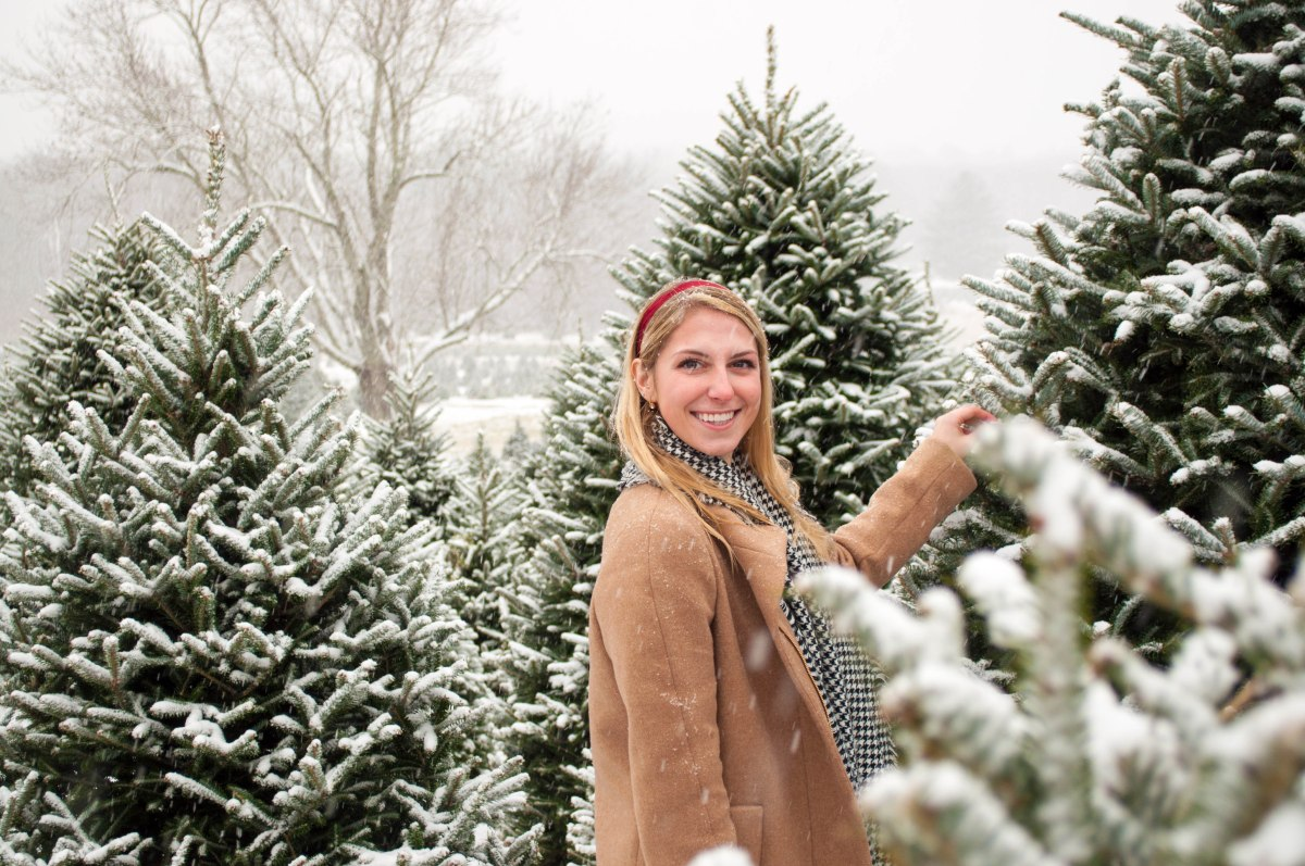Bay State Blonde's Guide to Picking the Best Christmas Tree