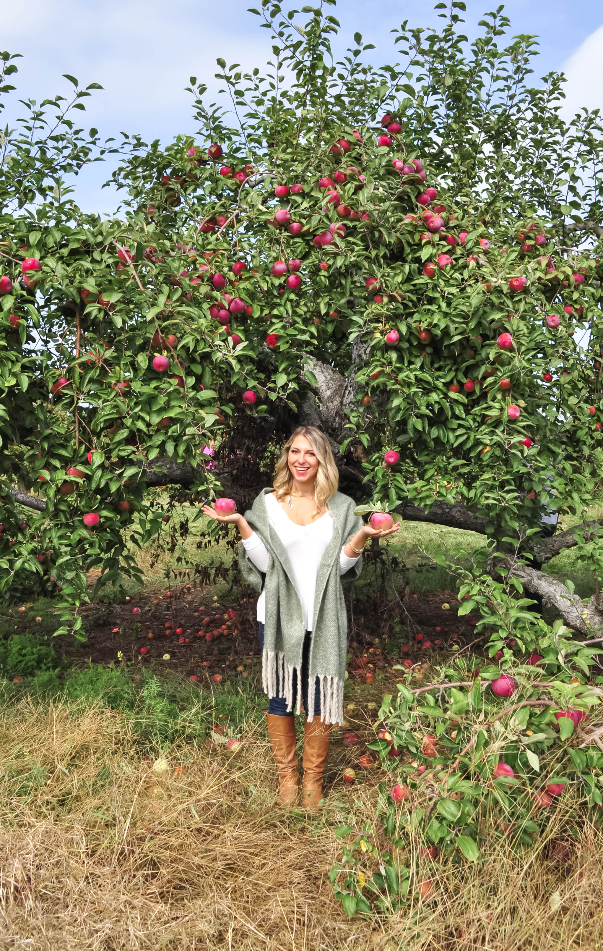 Apple Picking18-13