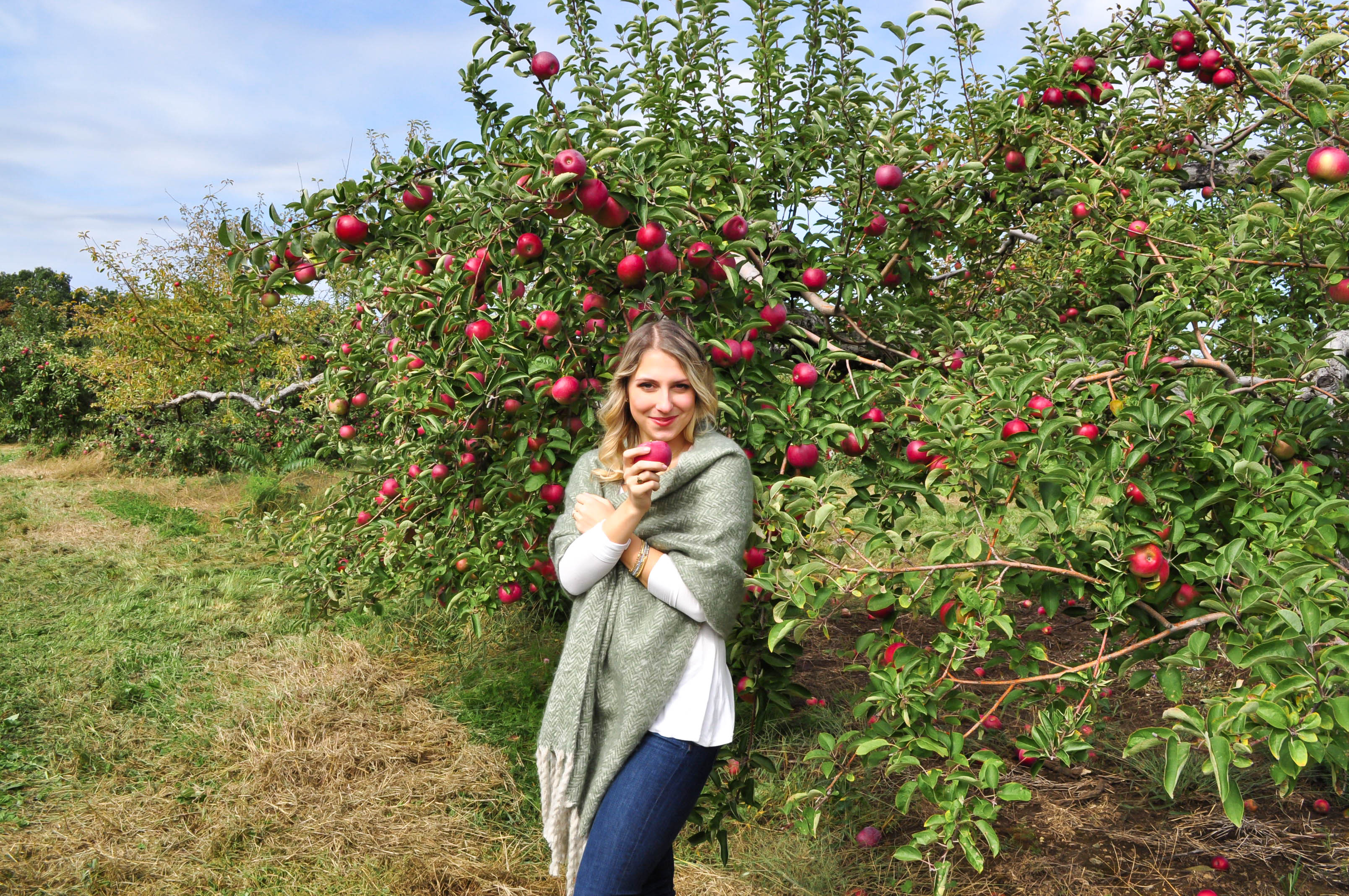 Apple Picking18-4