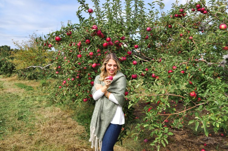 Apple Picking18-6
